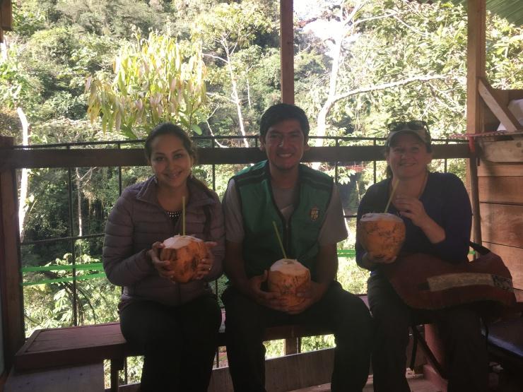 coconutgrouptigre